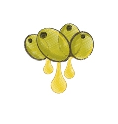 set olive oil drop drawing vector image