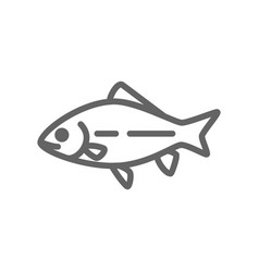 Simple fish and carp line icon symbol and sign vector