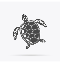 Turtle Isolated on White Background vector image