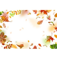 Bright autumn leaves fall down vector