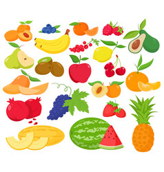 fruit and berries icon set vector image