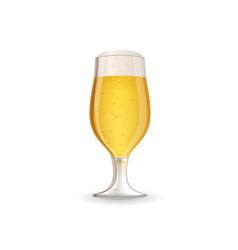realistic glass beer vector image