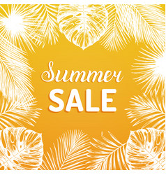 summer sale background discount card with vector image