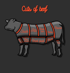 cut of beef set vector image