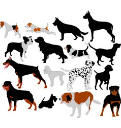 dogs vs vector image vector image