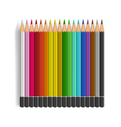 color pencils set on white background vector image