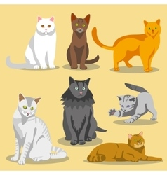 Cute cats with different colored fur and vector