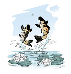 fishes jump out from water after a dragon-fly vector image