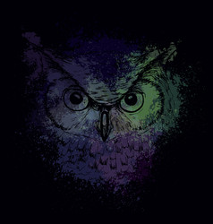 Head of an owl at night on a bright background vector