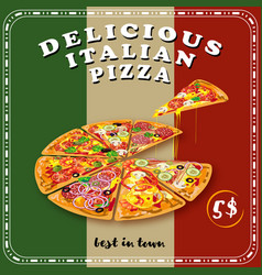 Pizza colored poster vector