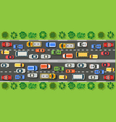 road top view with highways vector image