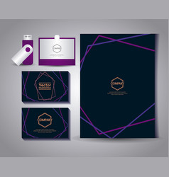 Set of business cards with gafete and usb vector