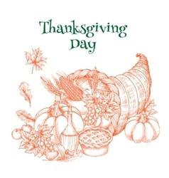 Thanksgiving harvest cornucopia greeting sketch vector image