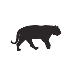 Tiger silhouette vector image