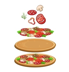 Ingredients for cooking pizza icon food vector image vector image