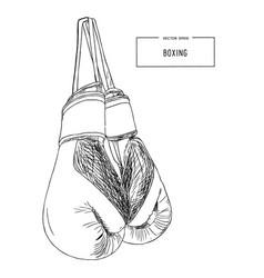 vintage boxing gloves hanging sketch vector image vector image