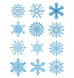 12 snowflakes vector image