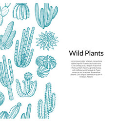 cactus pattern hand drawn wild cacti vector image