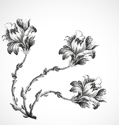 Hand-drawn bouquet of three flowers of lily vintag vector image