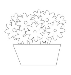 isolated cute flowers vector image