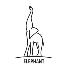 logo template elephant vector image