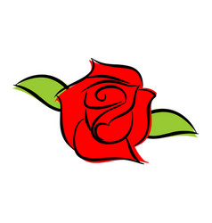 red rose isolated flower and green leaves on vector image