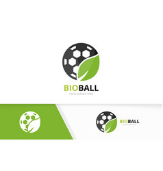 soccer and leaf logo combination ball and vector image
