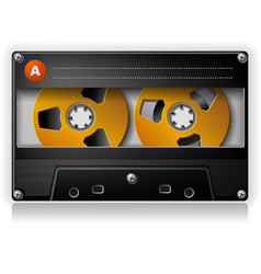 Analog Music Stereo Audio Compact Cassette vector image vector image