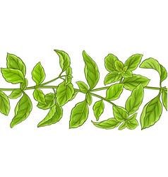 Basil plant pattern vector