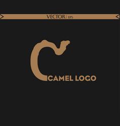 camel letter logo vector image