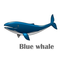 Cartoon blue whale vector image