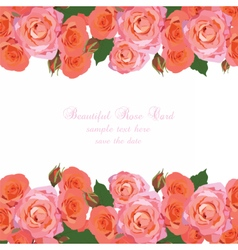 Delicate Pink Roses Card vector
