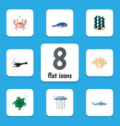 flat icon sea set of conch shark cachalot and vector image