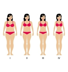 Gradual weight loss vector