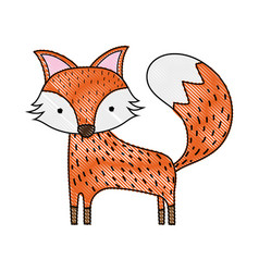 Grated cute fox wild animal of the forest vector