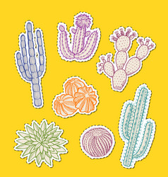 hand drawn desert cacti stickers set vector image