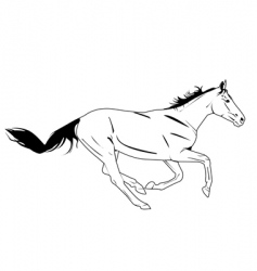 horse galloping vector image vector image