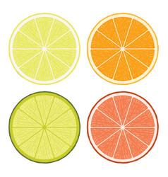 Lime lemon grapefruit and orange slices vector