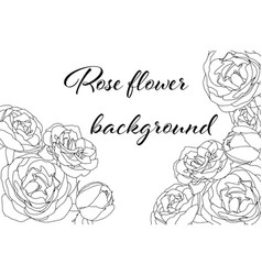 hand drawn card with light and white roses on vector image