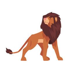 Proud powerful lion mammal wild cat jungle animal vector
