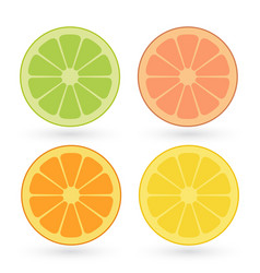 Set of lemon orange lime grapefruit slices vector