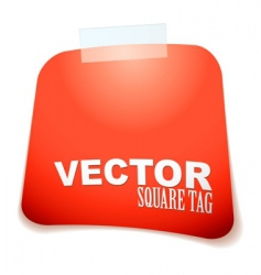 square tag red vector image