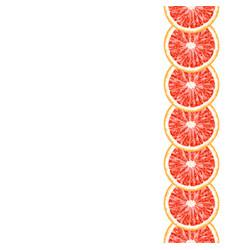 seamless decorative vertical border of grapefruit vector image vector image
