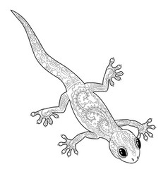 coloring page with gecko in zentangle style vector image