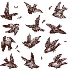 Fighting sparrows vector