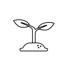growth plant icon vector image