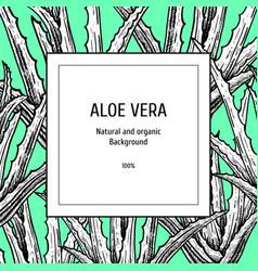 Hand drawn background with aloe vera vintage vector