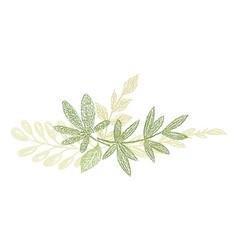 green botanical hand drawn leaf composition vector image