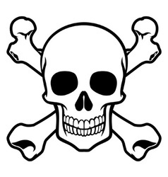 skull with cross bone vector image vector image