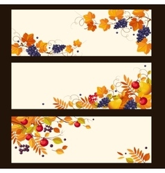 Autumn Banners with Ripe Berries and Leaves vector